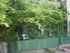 BILOCALE WITH GARDEN At 50 M FROM MARE - 18